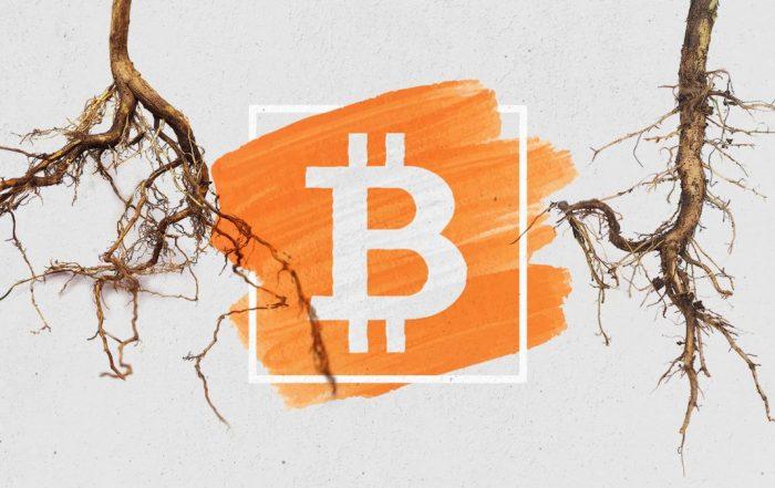 Taproot l'aggiornamento più ambizioso di Bitcoin