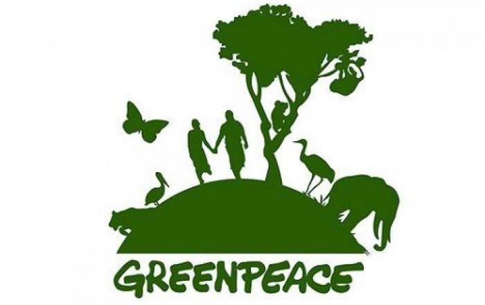 Greenpeace USA smette di accettare donazioni di Bitcoin