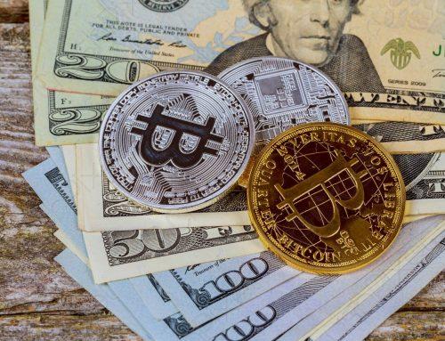 Il 23% della nuova generazione sta investendo in meme coin come Dogecoin e Shiba Inu, Gamblers Report