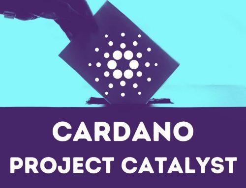 """Cardano porta avanti il maggior numero di progetti attivi su GitHub prima dell'arrivo di """"Fund4"""""""