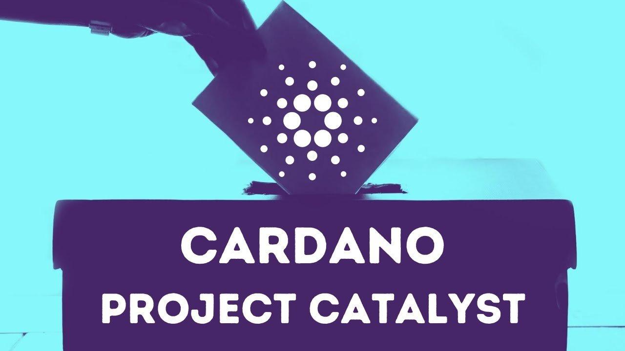 Cardano porta avanti il maggior numero di progetti attivi su GitHub